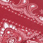 Paisley Pattern Hat Red